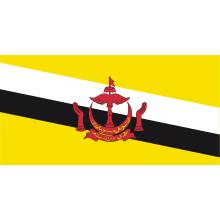 Brunei : drapeau national