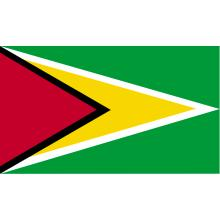 Guyana : drapeau national