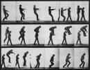 Décomposition du mouvement, E. Muybridge